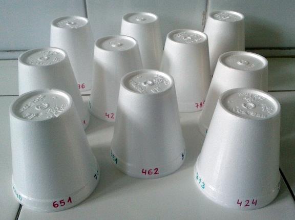Ordenar Numeros Con Vasos De Plastico Aprendiendo Matematicas