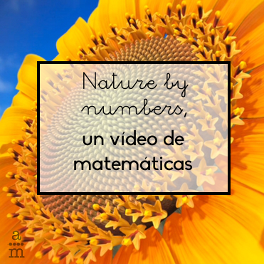 video nature numbers
